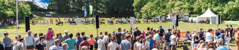Hippinksterconcours Hattem op 8 en 10 juni 2019
